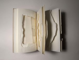 Book of obstacles (teared), detail Paper Opened aprox. 15 x 24 x 12 cm, 2014 by David Gonçalves