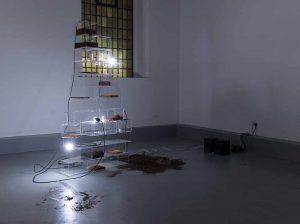 Sol Jee Ahn GlogauAir Installation Contemporary Art Berlin Artist in Resident