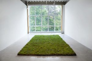 Clicking Heels Installation, sod and carpet, 2014