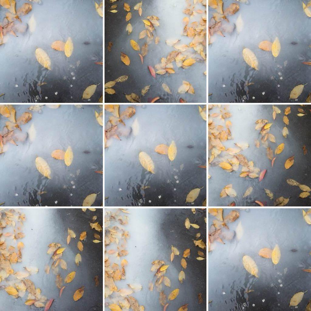 Maple-Soup-c-print-594x841mm