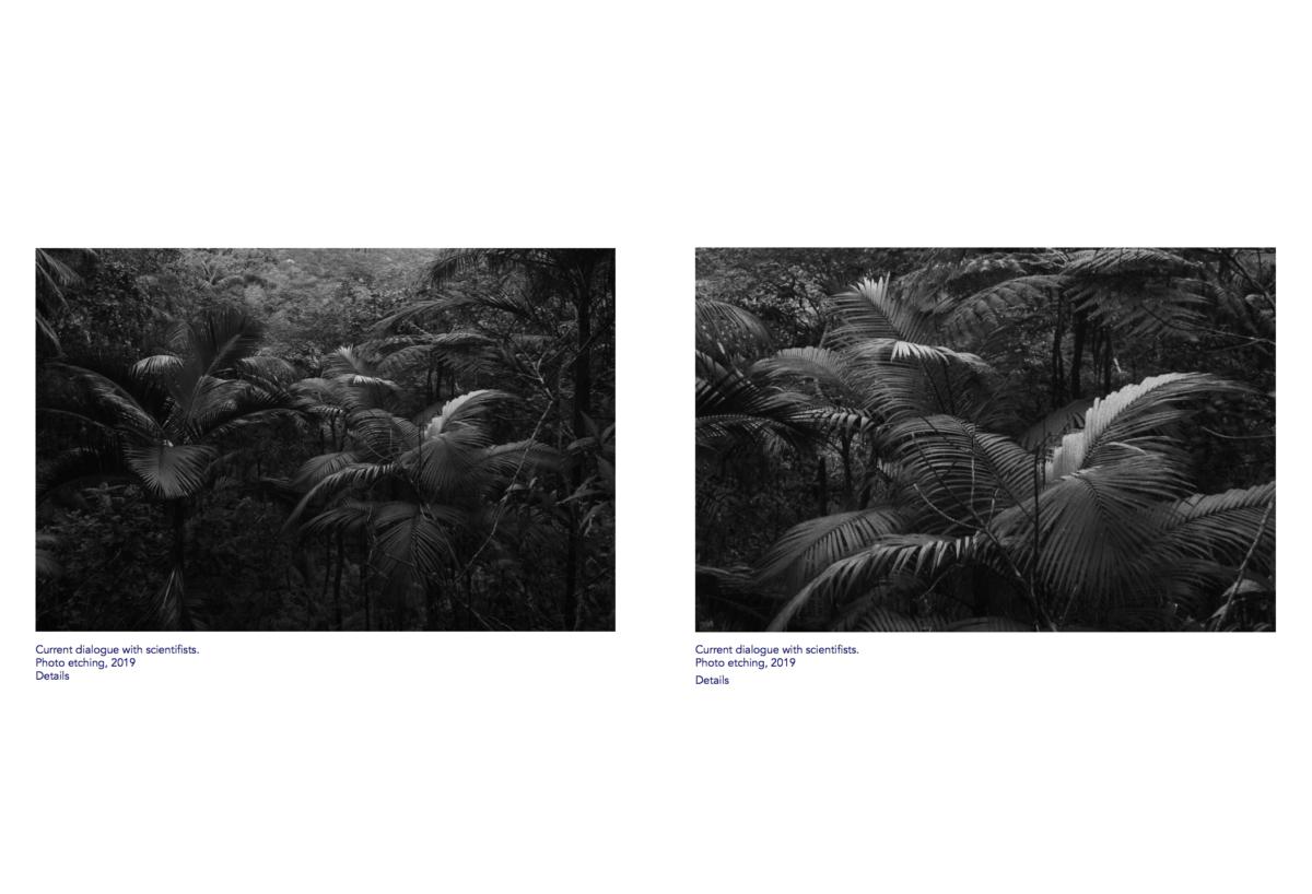 2020_Laure Winants_Profile_Image - 05